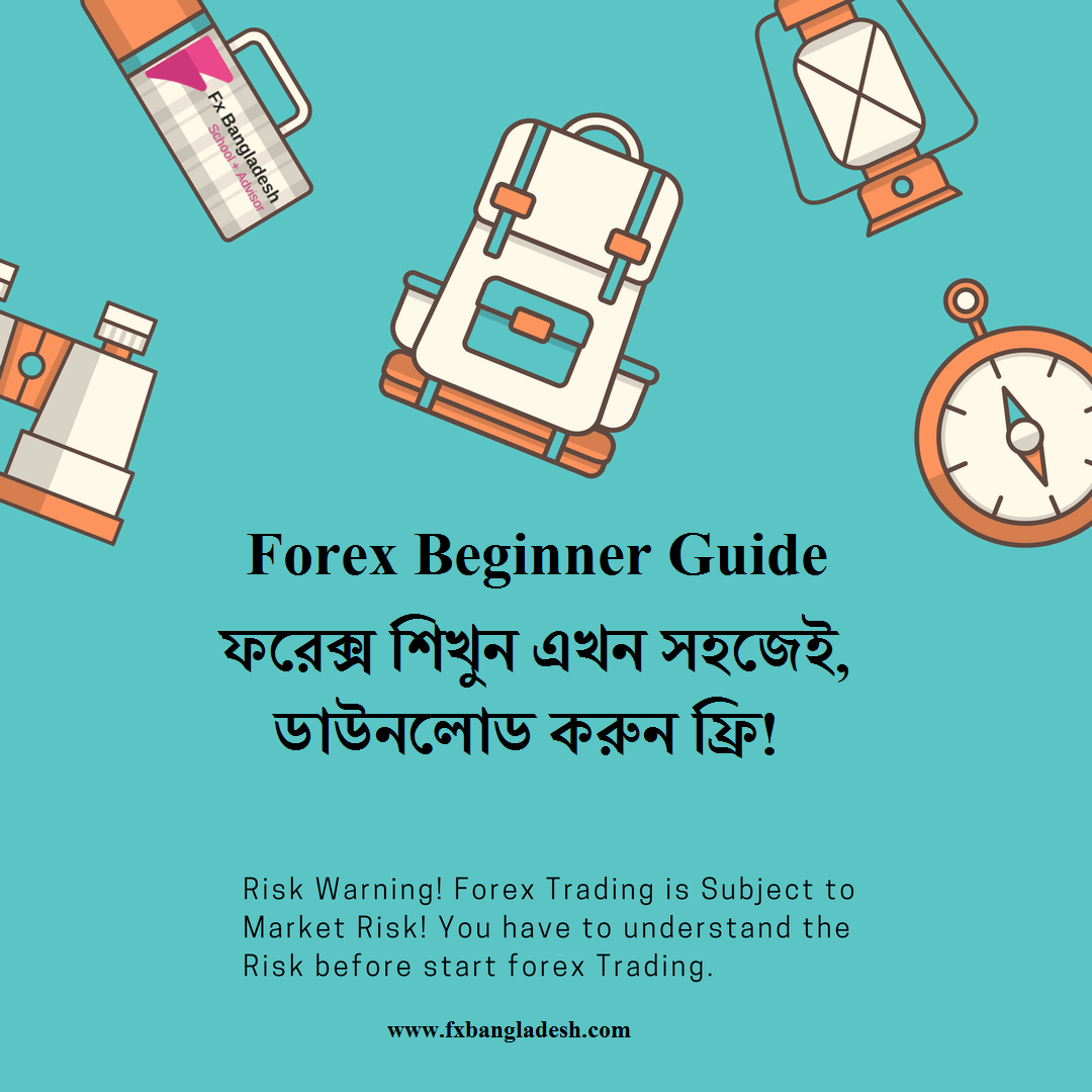 Forex Beginner Guide